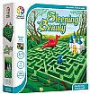 Smart Games - Sleeping Beauty - Deluxe –
